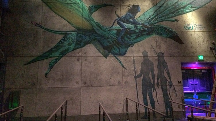 The mural seen en route to Avatar Flight of Passage depicts the Na'vi rite of passage of being chosen by a banshee, as seen in ancient cave paintings. Guests will never again see this mural without humans in front of it.