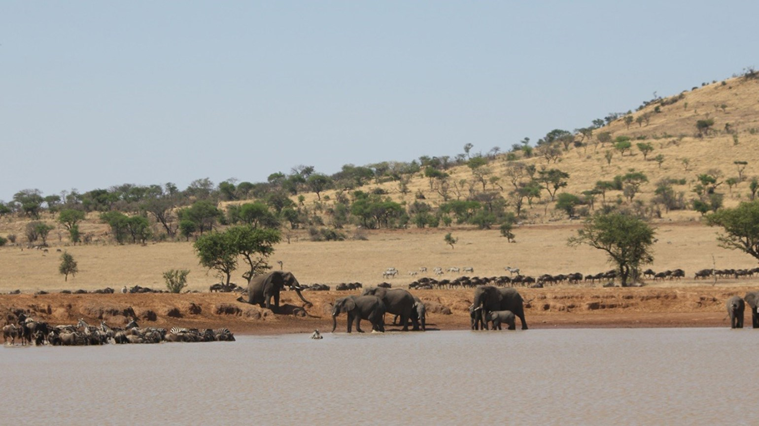 Tanzania tour, from $1,750