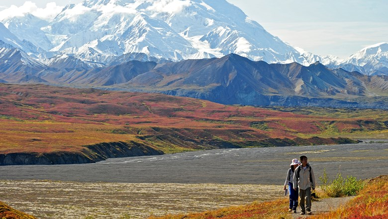 While Denali visitation dropped 5 percentage points between 2011 and 2016, it still ranks as a top reason for future repeat visits.