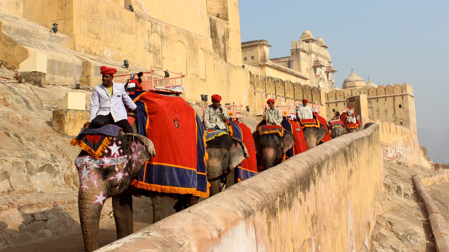 India tour, from $599