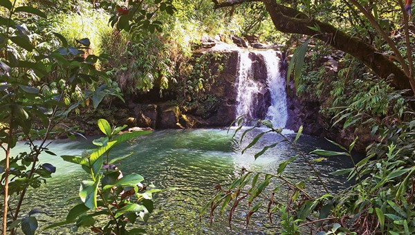A waterfall-fed swimming hole in Hana, on the eastern tip of Maui. The town is a 64-mile drive from the island's Kahului Airport.