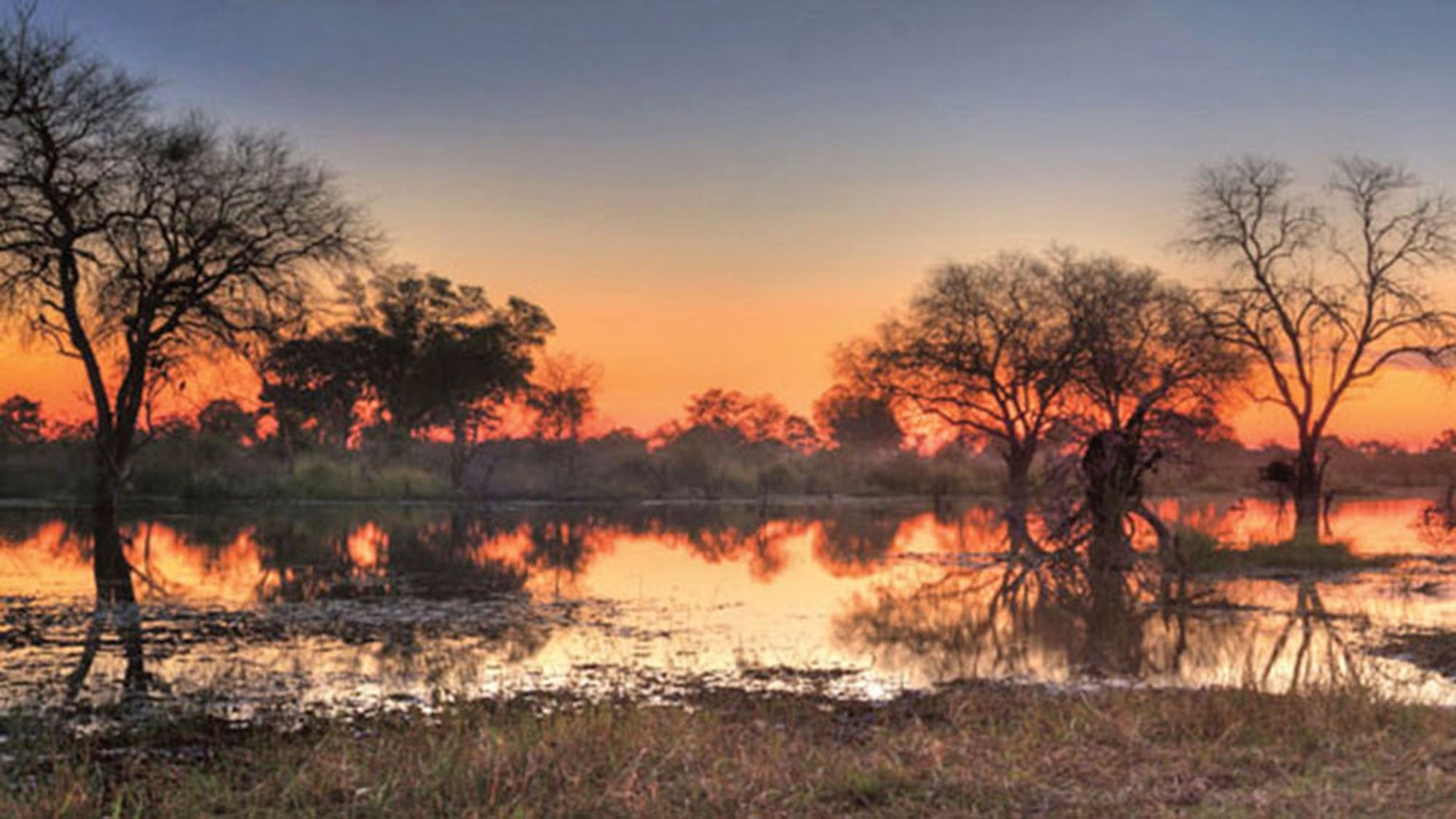 Exploring Botswana's wildlife by air, land and water