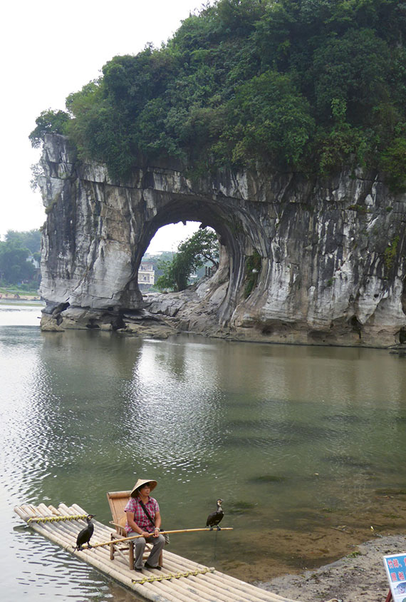 A man uses trained cormorants to fish in Guilin's Elephant Hill Park, named for the rock formation behind him. Photo Credit: Roger Allnutt