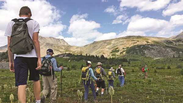 In addition to dramatic high-country views, the hikes wound through bucolic meadows where wildflowers were abundant.