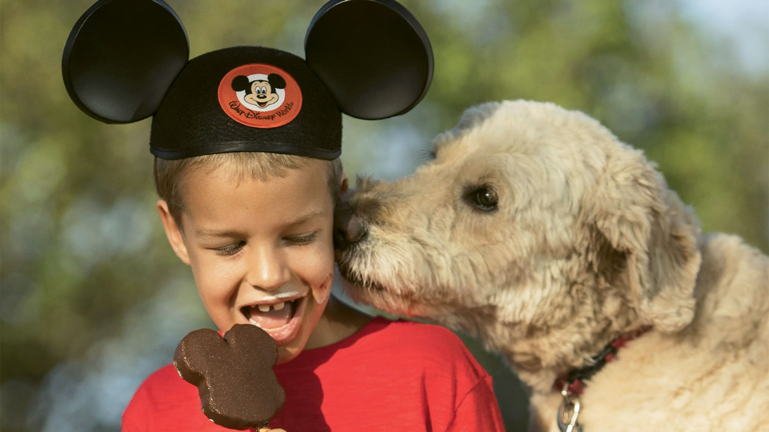 Four Disney hotels welcoming canine guests