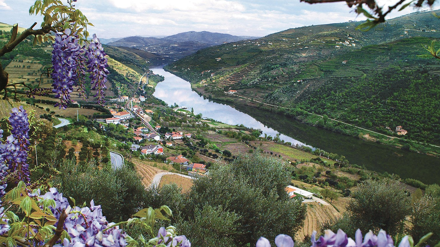 AmaWaterways brings U.S. winemakers to European wine regions