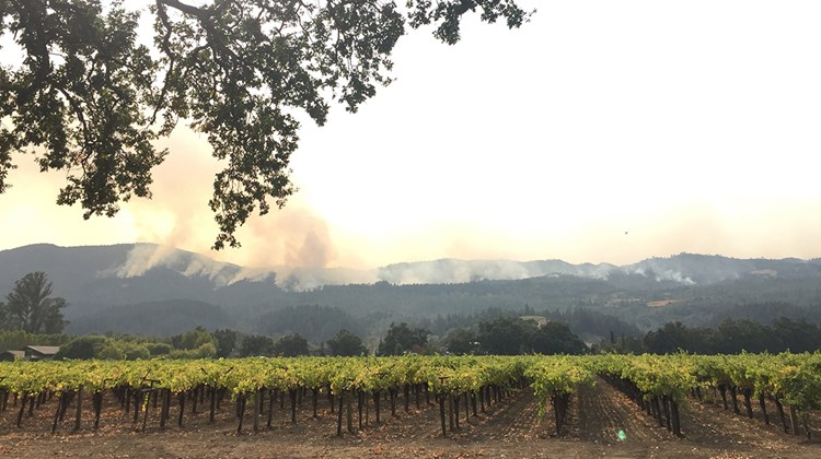 Travel Weekly's Michelle Baran traveled to the region on Oct. 16 to view the damage following last week's wildfires in Napa and Sonoma counties. Fire crews worked to contain the 53,000-acre Nuns Fire as it blazed behind some of Napa's most famous wineries such as Robert Mondavi and Beaulieu.