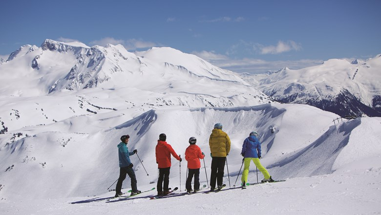 Vail Resorts cemented its grip on the top spot in the North American ski resort industry by acquiring British Columbia's Whistler Blackcomb last year for $1.1 billion.