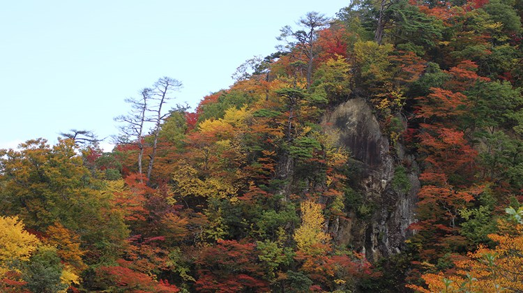 Destinations editor Eric Moya visited Japan last week on a fam trip showcasing fall foliage, hot springs and more in the Tohoku region. Pictured, fall foliage at the Naruko Gorge in Osaki.