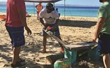 Cleanup efforts at Crash Boat Beach in Aguadilla, Puerto Rico.