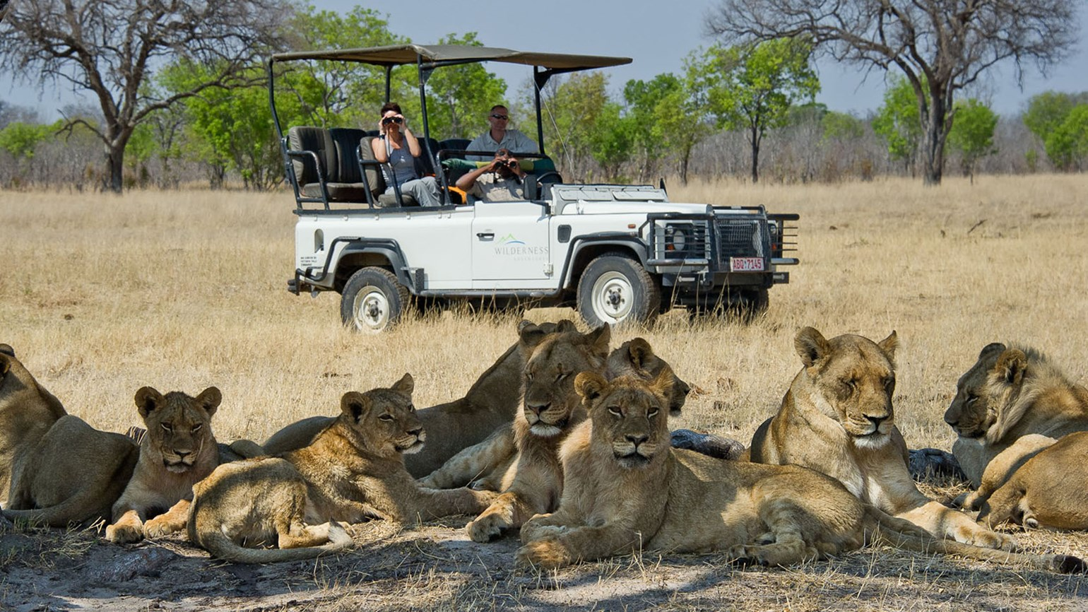 Extraordinary Journeys launches hands-on safari experiences in Southern Africa