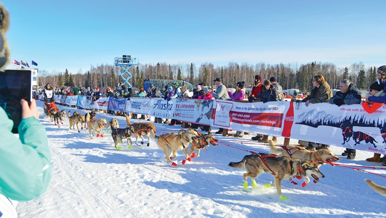 Sled dogs and the Iditarod race feature prominently in Salmon Berry Travel & Tours' packages for 2018.