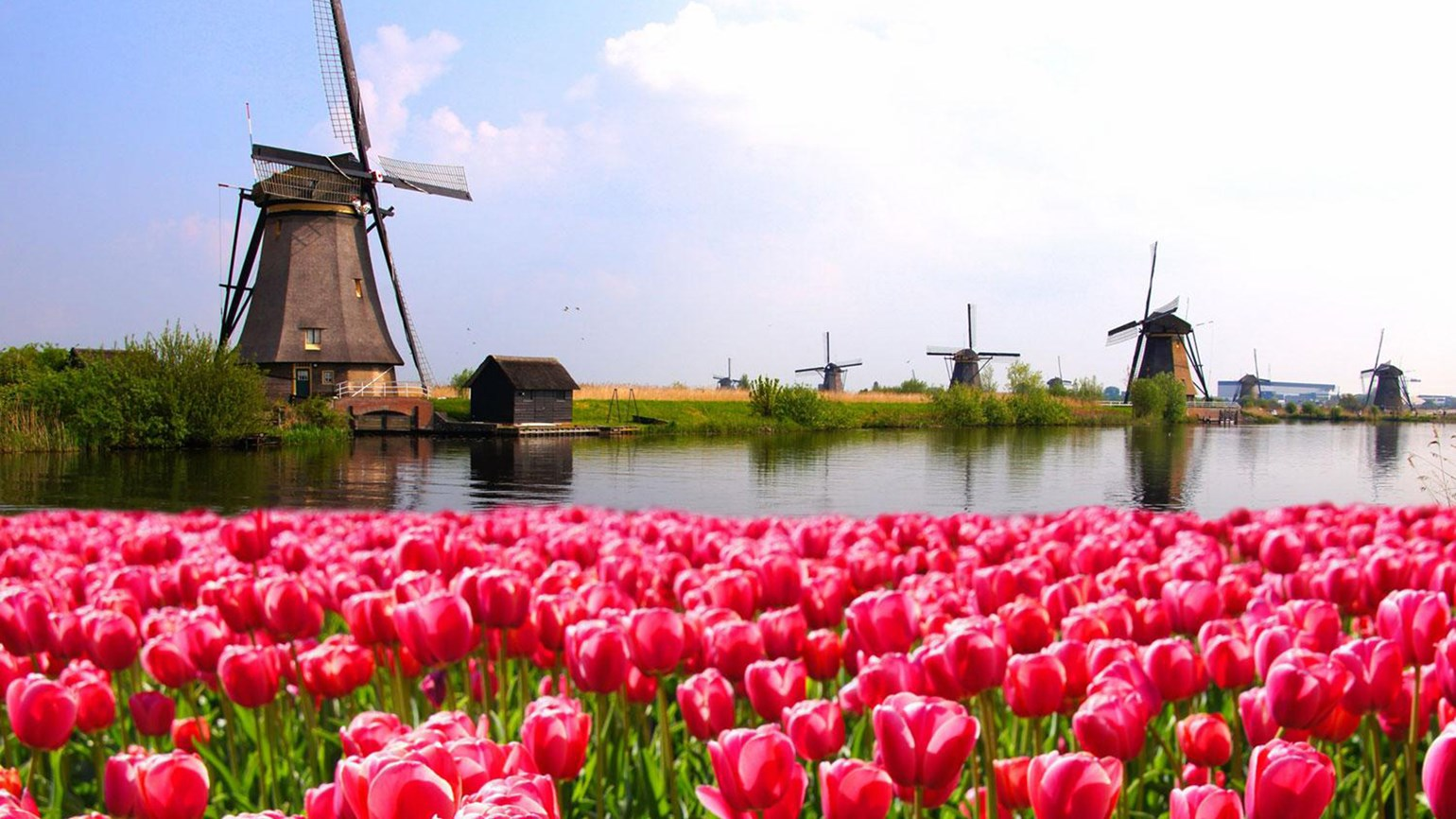 Netherlands barge cruise, $1,200