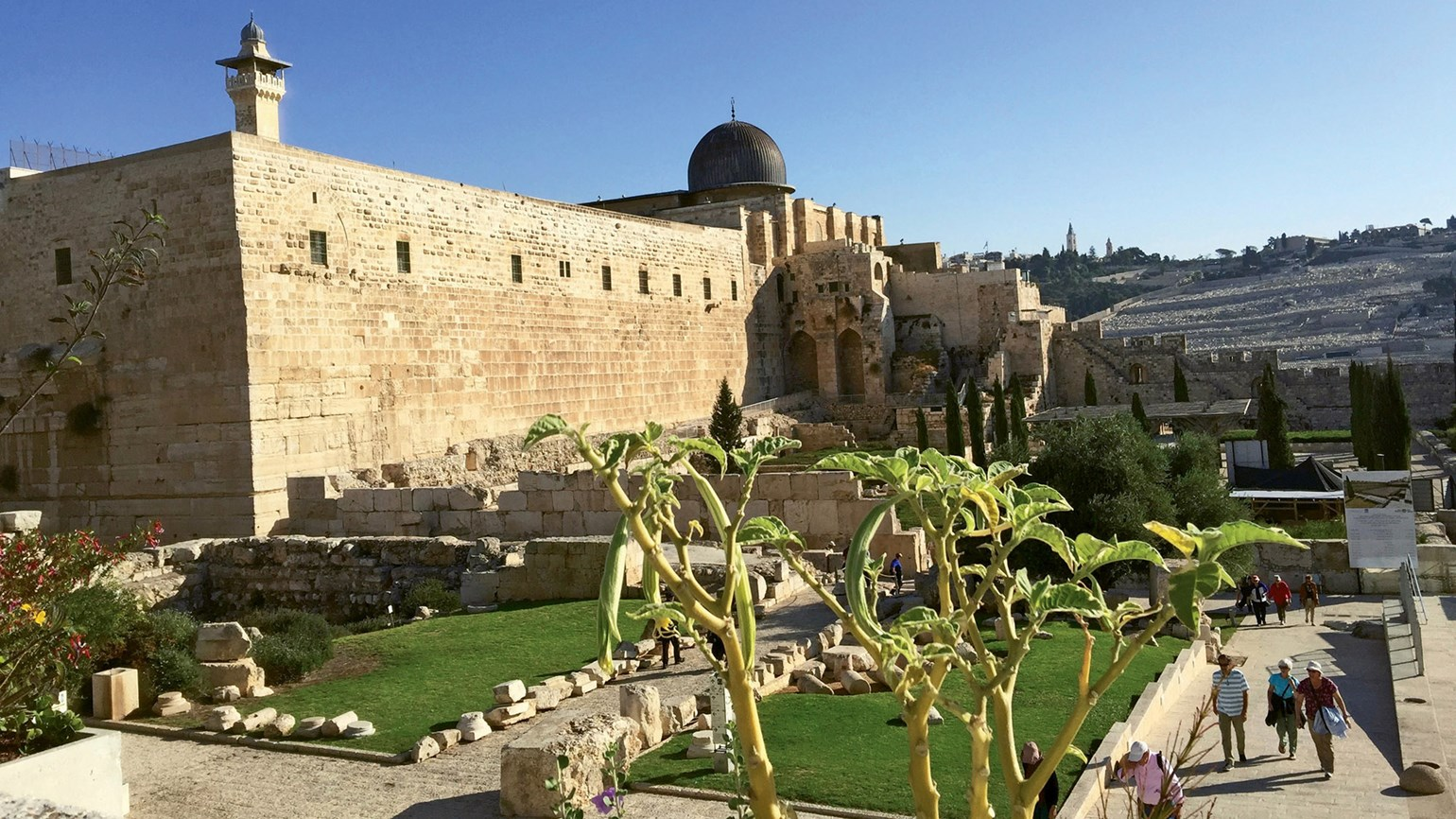 Eclectic experiences on a multicity Israel tour