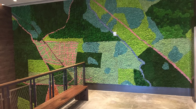 The lobby at the 177-room hotel adjoins a moss wall that absorbs the air's moisture.