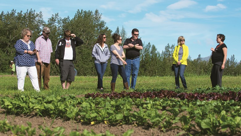 Alaska Farm Tours' excursions visit a selection of farms in Talkeetna and Palmer, Alaska.