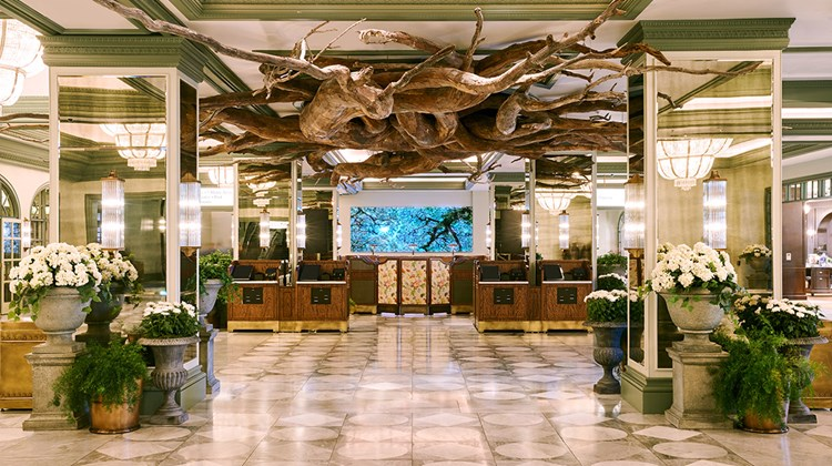 Filled with natural light and punctuated by nature-inspired decor and art, Park MGM's lobby is a nod to urban gardens and parks.