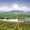 Rhine and Moselle river cruise, from $1,120