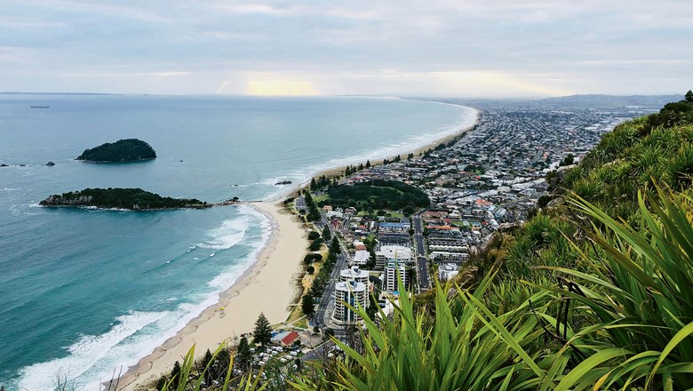 The view from Mount Maunganui in the Bay of Plenty region of New Zealand's North Island, which is also home to Comvita headquarters in Paengaroa.