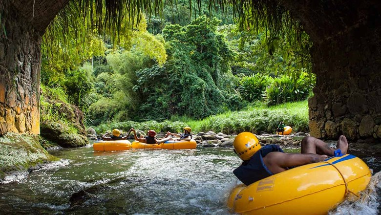 Cruise passengers can do river tubing in Dominica.