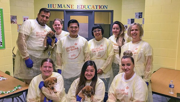 A team from the InterContinental Toronto Centre volunteered with the Toronto Humane Society.