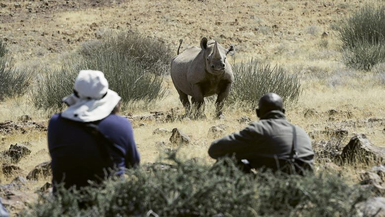Wilderness Safaris offers rhino tracking in Namibia as one of it's Travel With Purpose itineraries.