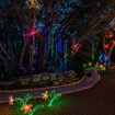 Lights in Bloom return to Sarasota's Selby Botanical Gardens for th holidays