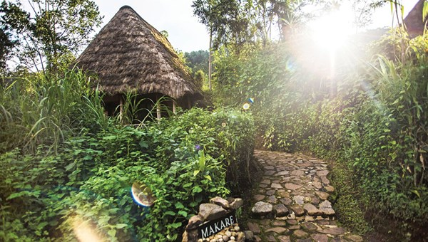 A cottage at the Bwindi Lodge in Uganda, which sits on the edge of Bwindi Impenetrable National Park.