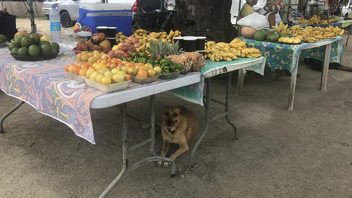 Fruit for sale at a market on Bora Bora.