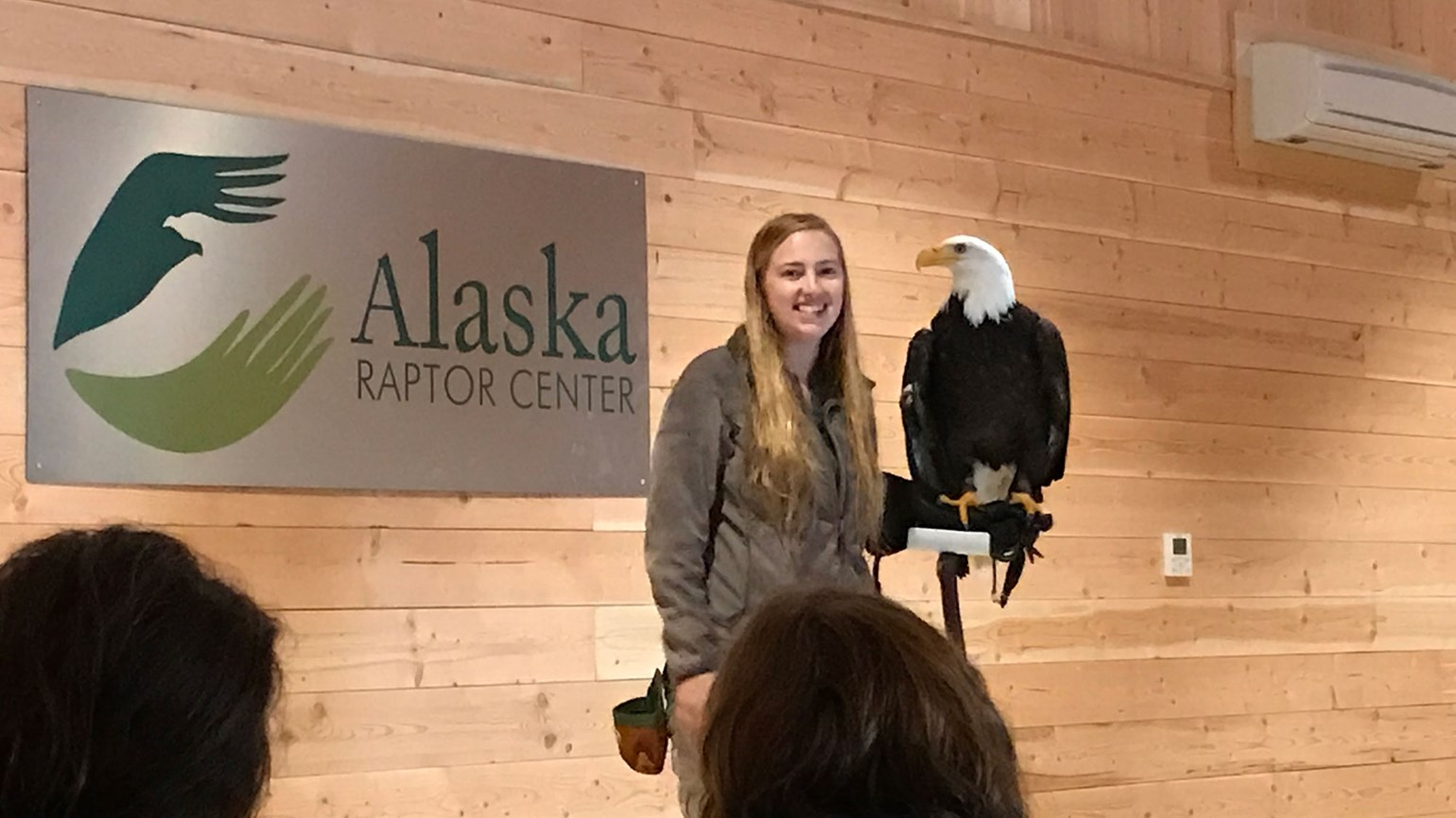 New options for experiencing Alaska's rainforests and raptors