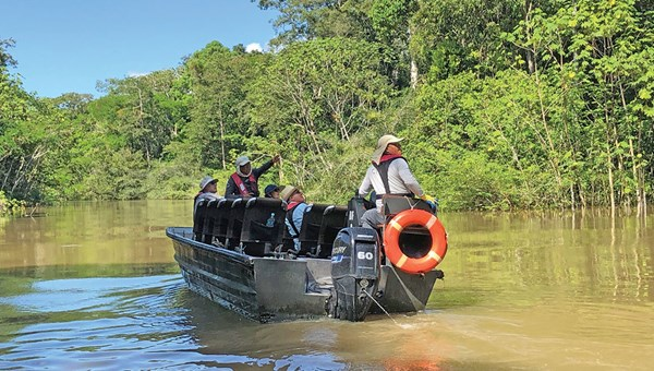 The Aria's guides pointed out a wealth of wildlife, including herons, sloths, monkeys and pink dolphins, during excursions on motorized skiffs.