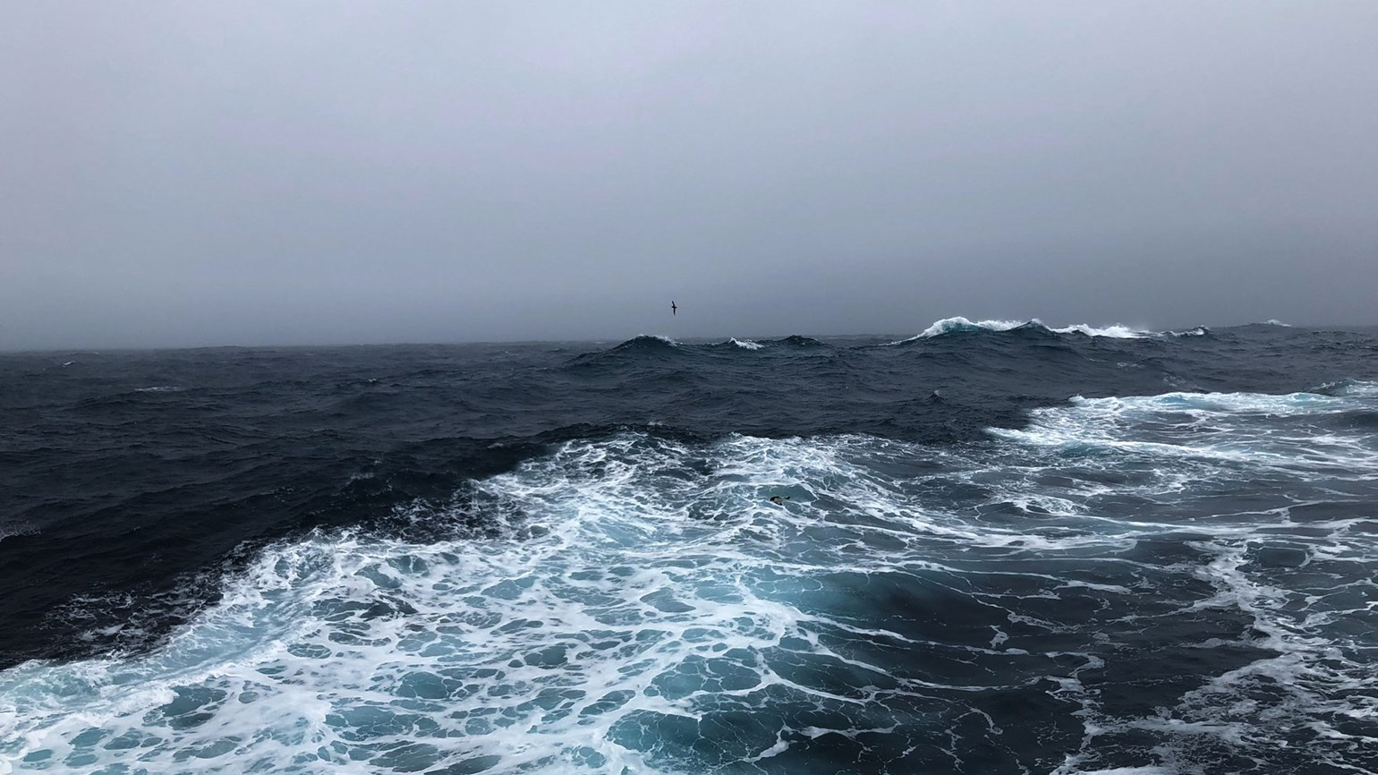 A rookie crossing Drake Passage
