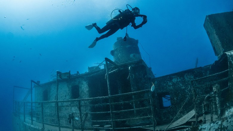 Divers have reefs and wrecks to explore on Grand Bahama Island.