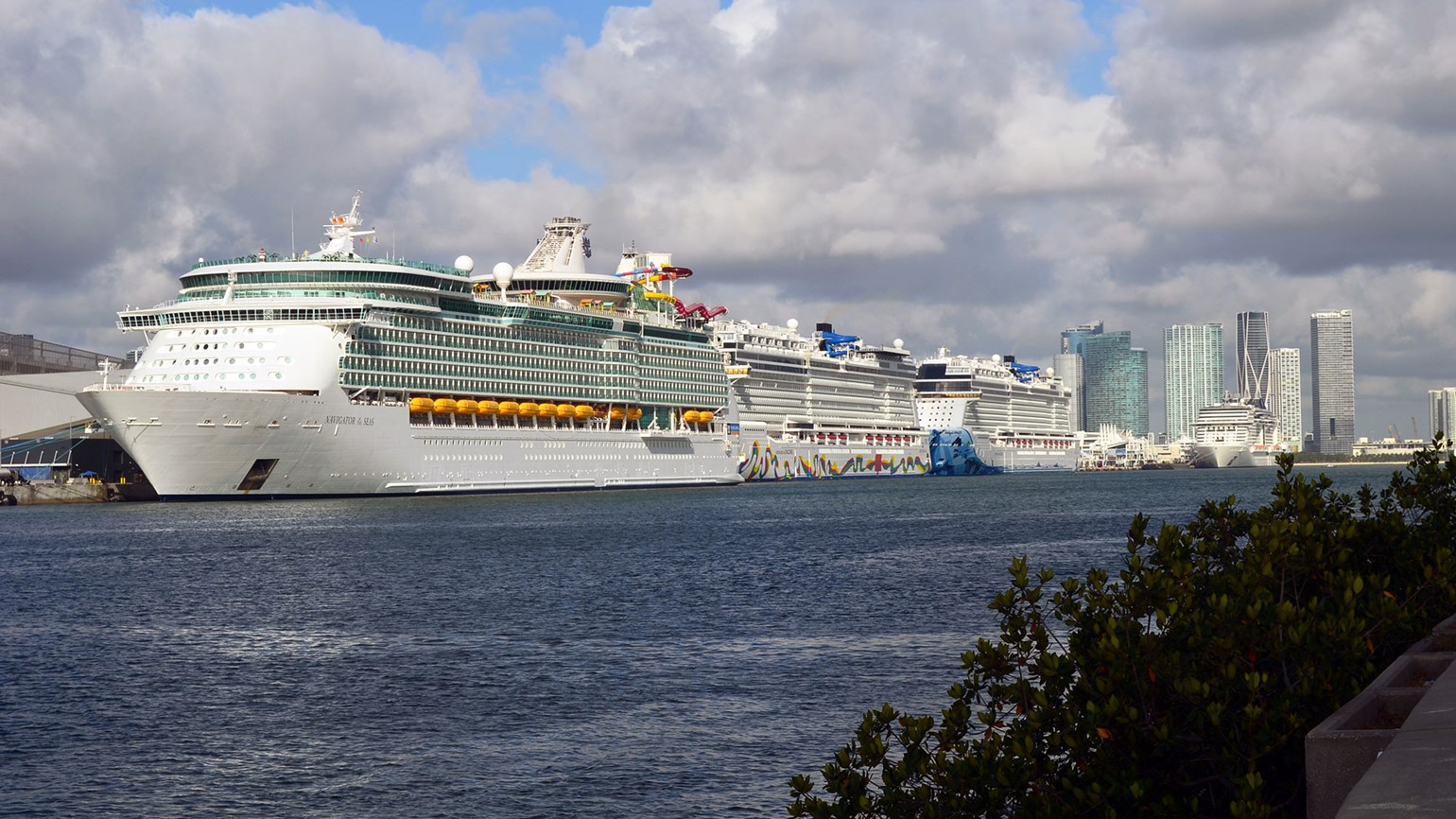 An unusual dynamic is on display as cruise lines send plans to the CDC