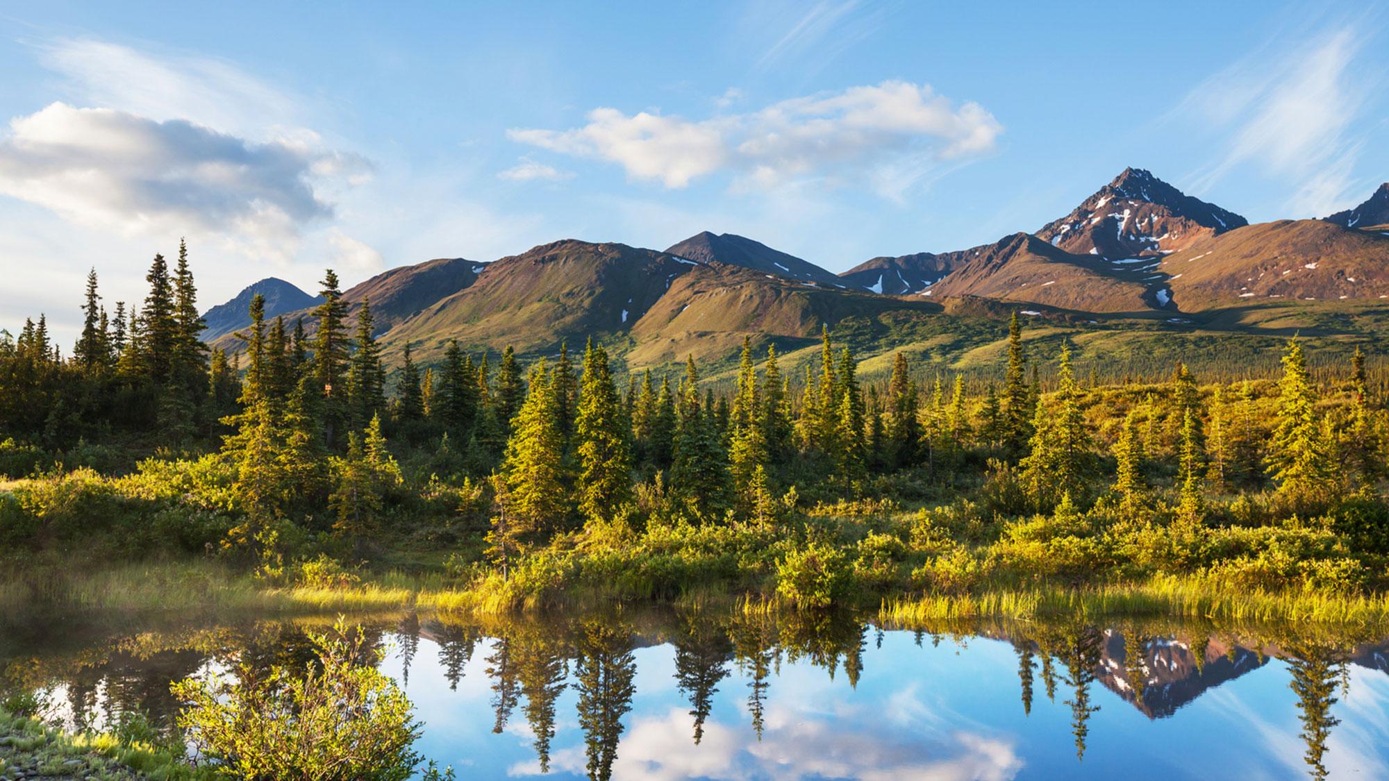 Denali National Park and Preserve.