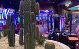 The 60,000-square-foot Mohegan Gaming and Entertainment-operated casino features Saguaro cactus and other desert-inspired decor.
