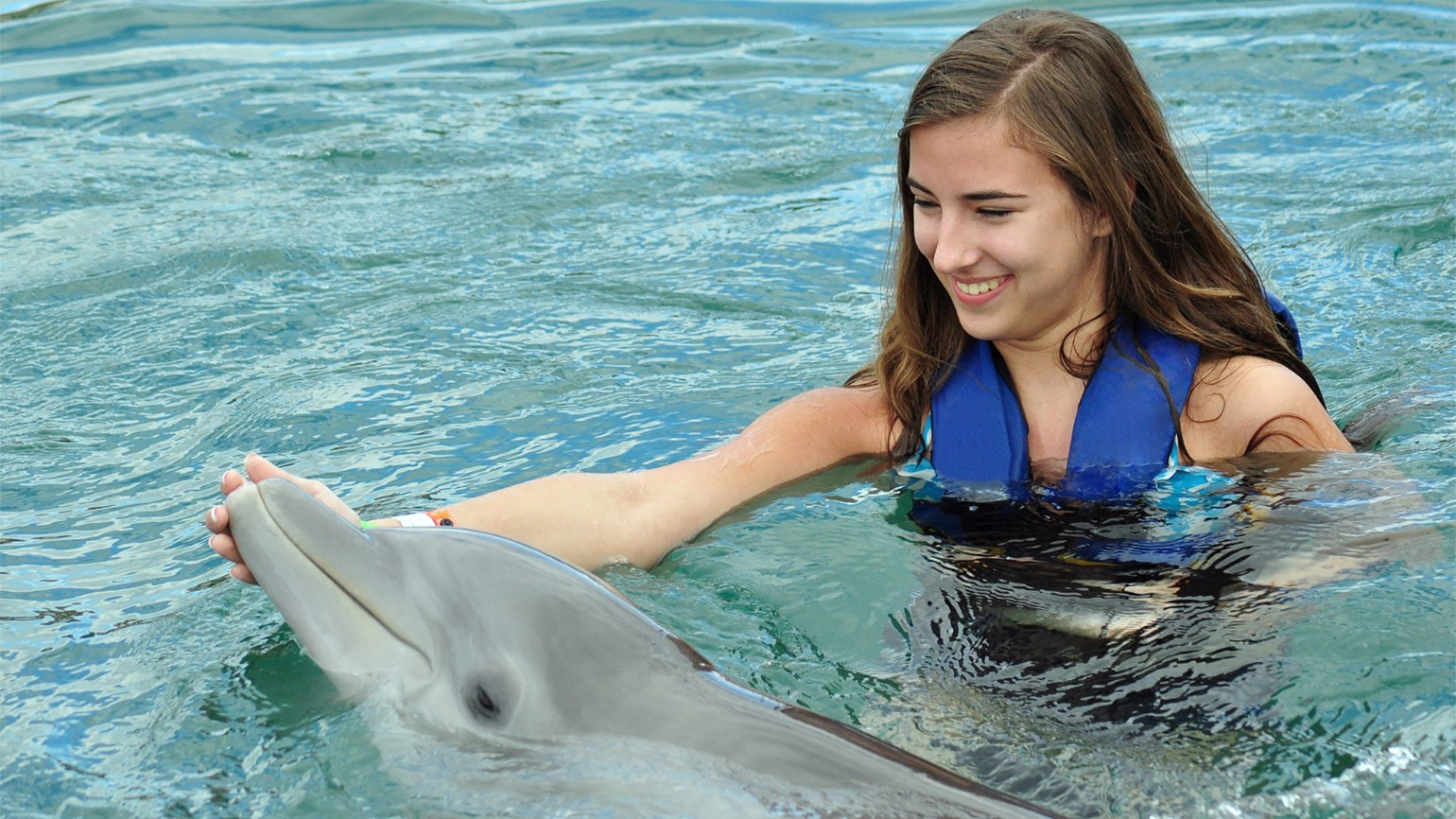 TripAdvisor stops selling many animal attractions, including dolphin swims
