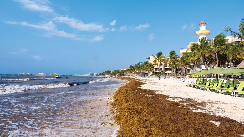 Mexico's resorts, destinations struggle to deal with