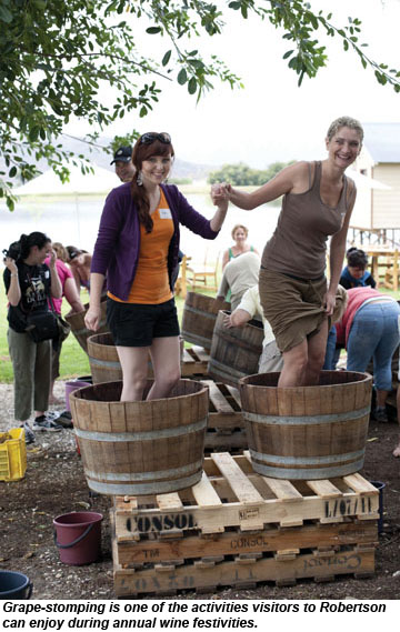 Robertson grape stomping