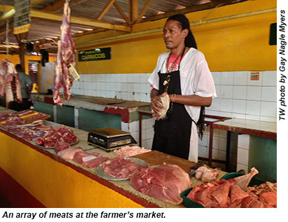 Cuba meat