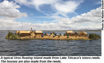 Image result for lake titicaca reed islands photos