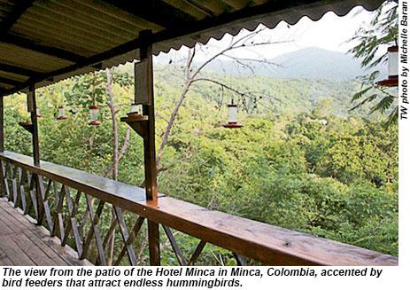 Colombia2-HotelMincaBirdfeeders-MB