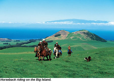 Big Island Horseback Riding
