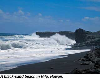 Black sand beach Hilo
