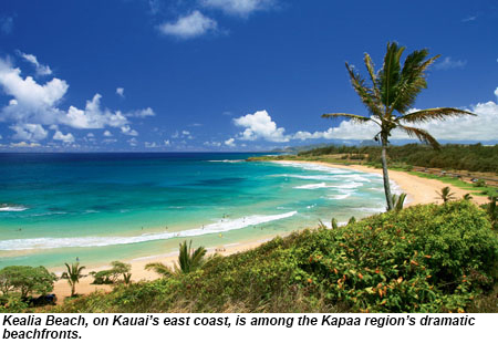 Out East True Island Insight In Kapaa Travel Weekly