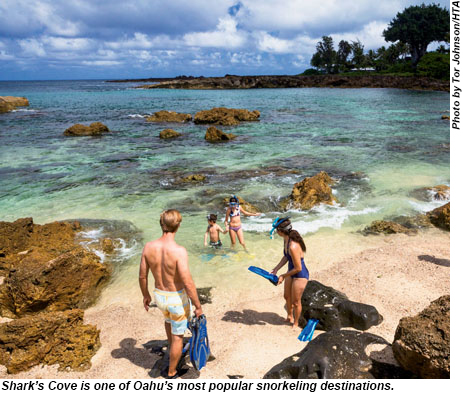 Sharks Cove is a popular snorkeling destination on Oahu.