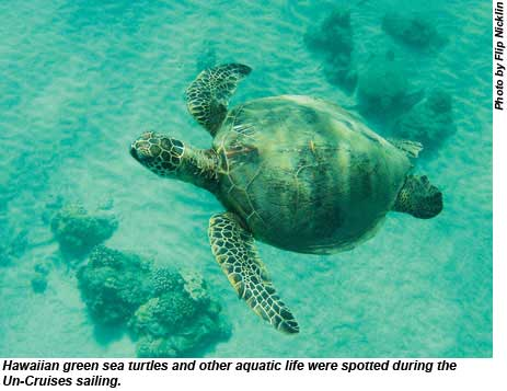 Hawaiian green sea turtles and other aquatic life were spotted during the Un-Cruise Adventures sailing.