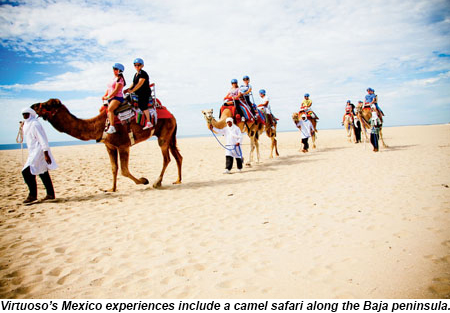 Baja Peninsula Camel Ride