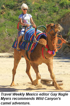 Gay recommends Wild Canyon's camel adventure.