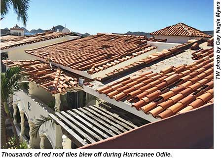 Cabo - roof tiles